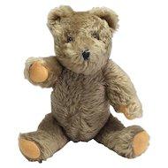 Vintage Musical and Mechanical Mohair Teddy Bear