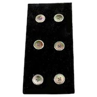 Set of 6 Vintage Abalone and Silver Buttons