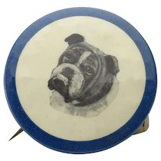 Vintage Celluloid Over Metal Pinback Button of Bulldog
