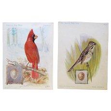 Singer Advertising Trade Cards, Cardinal, Sparrow, ca. 1900 and 1926