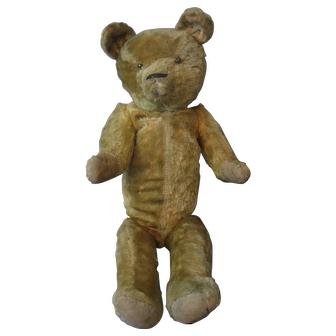 IDEAL - American Bear - circa 1920's - Mohair - Disc Joints - Excelsior Stuffed -