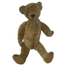"1920's Ideal 18"" Mohair Bear with Hump, Glass Eyes, Stitched Nose - with Evaluation Certificate"