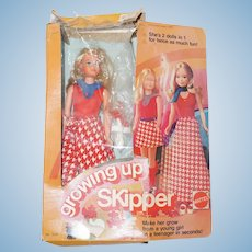 skipper in original box1975 Mattel Growing Up