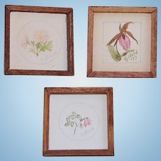 3 Vintage Artist Signed Dollhouse Wildflower Art Miniature Watercolors