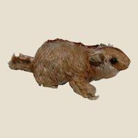 Steiff Murmy Marmot Groundhog Stuffed Toy