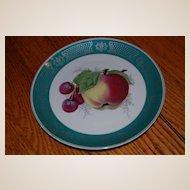 5 Rosenthal German Hand Painted Fruit Plates