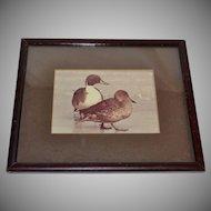 Original Sepia Tone Duck Photograph in Wood Frame
