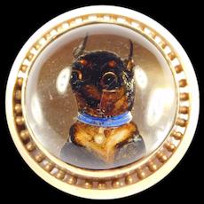 Victorian Essex Crystal Reverse Carved Quartz Dog Brooch 14k