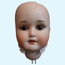 German Bisque Doll Head Schoneau Hoffmeister 1909