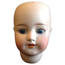 Antique German Bisque Doll Head S & H 550