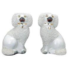 Vintage pair of Staffordshire ceramic confetti coat poodles
