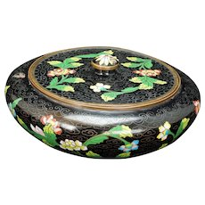 Chinese black cloisonné Covered Box Circa 1900