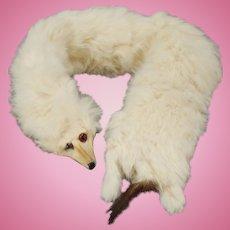 Stole in White Rabbit