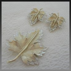 Vintage Sarah Coventry Brooch and Earring Set