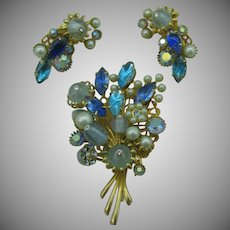 Beautiful Blue pin and earring set