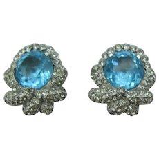 Beautiful Blue Rhodium Plated Earrings