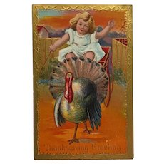 Little Girl On Thanksgiving Turkey Cart Ride Postcard
