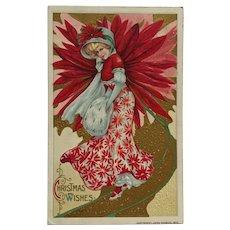 Poinsettia Christmas Beauty - Schmucker Postcard