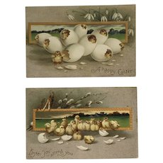 Lot of 2- Easter Chicks Hatching Postcards