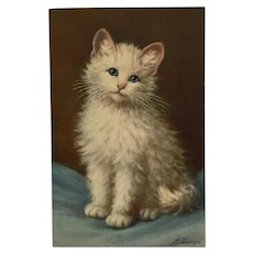 Darling White And Gray Kitten With Blue Eyes-Signed Lampe