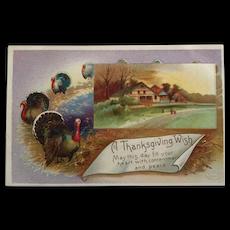 Parade Of Turkeys Postcard