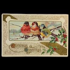 Christmas Birds Trio Postcard