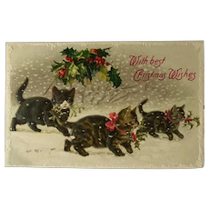 Christmas Kittens In Snow Postcard