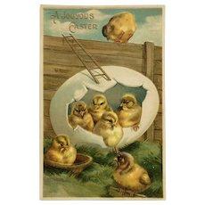Big Easter Egg Full Of Chicks Postcard