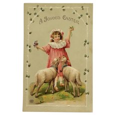 Girl In Pink With Lambs Easter Postcard