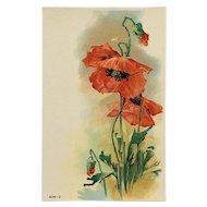 Bright Beautiful Red Poppy Postcard