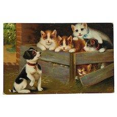 Puppy And Kitties Meet Postcard