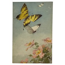 Butterflies Fluttering Through Flowers