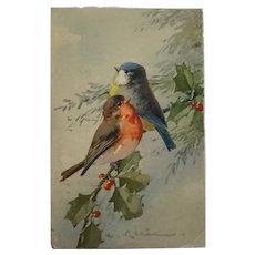 Catherine Klein Christmas Birds Postcard