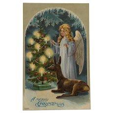 Christmas Angel And Deer Postcard