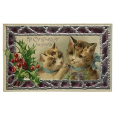 Affectionate Christmas Kitty Duo Wearing Blue Bows