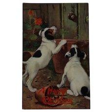 Tuck's Christmas Puppies At The Door Postcard