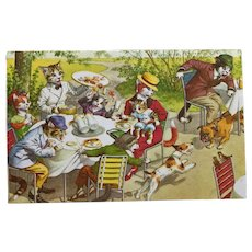 Mainzer Cats Dining Outdoors With Misbehaving Dogs Postcard