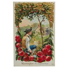 Young George Washington Surrounded By Cherry Trees Postcard