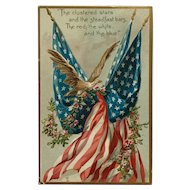 Celebrating Old Glory Patriotic Postcard