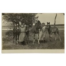 Turn Of The Century Girls And Horses