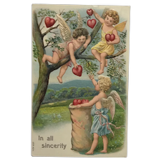 Collecting Valentine's Hearts in The Trees Postcard