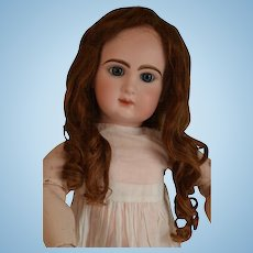 Beautiful old auburn brown color HH wig for a bigger French or German doll.