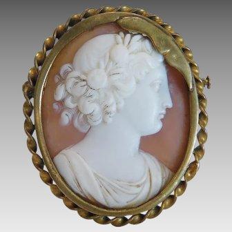 Antique shell Cameo brooch, gilt, metal, 19 th century