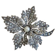 Victorian seed pearl brooch, silver 800, 19th century
