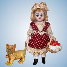 "Sweet Little 4"" All Bisque German (glass eyes) Dollhouse doll & Kitten"