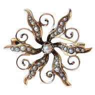 Late Victorian 10K Rose Gold Seed Pearl Starburst Brooch - Pin