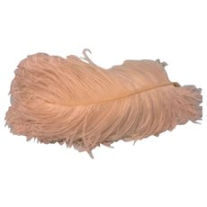 Very LARGE - Two White Ostrich Feathers - Beautiful!