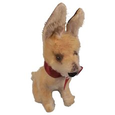 Little German Steiff Xorry Desert Fox