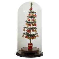 Late 19th Century/Early 20th Century Feather Tree Decorated under Antique Glass Dome - BEST