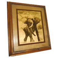 """Reverse Photo on Glass """"Elephant"""" by Dennis Curry"""